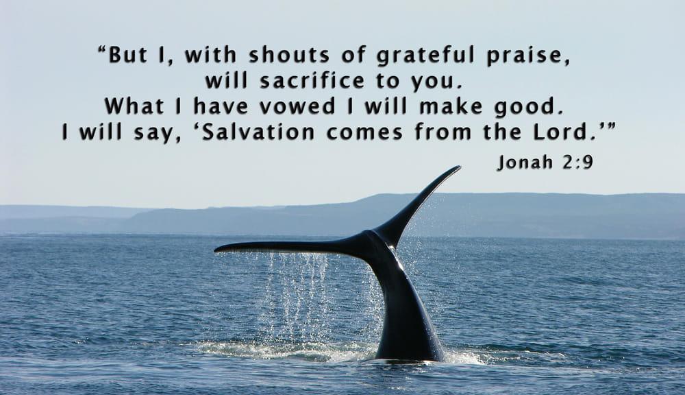 COMBACK: Jonah – Sep 22, 2019